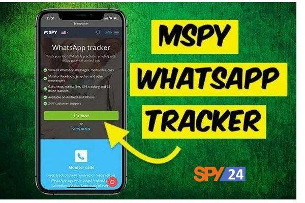 Record WhatsApp calls remotely